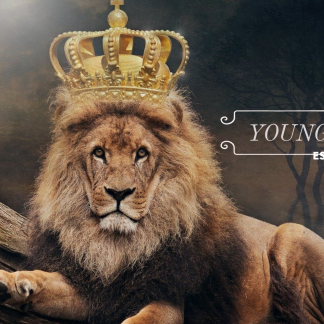 YoungKingJ