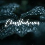 Chasethedreams