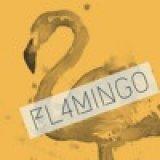 FL4MINGO