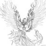 _phoenix_